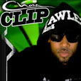 single_clip